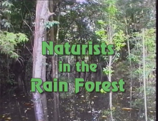 Naturists in the Rain Forest