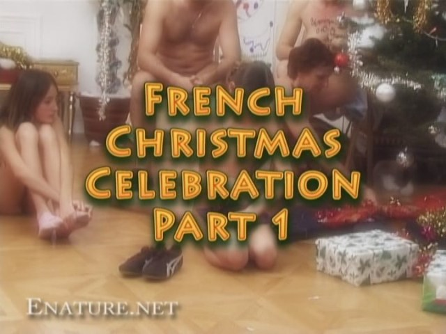 French christmas celebration 1 (enature)