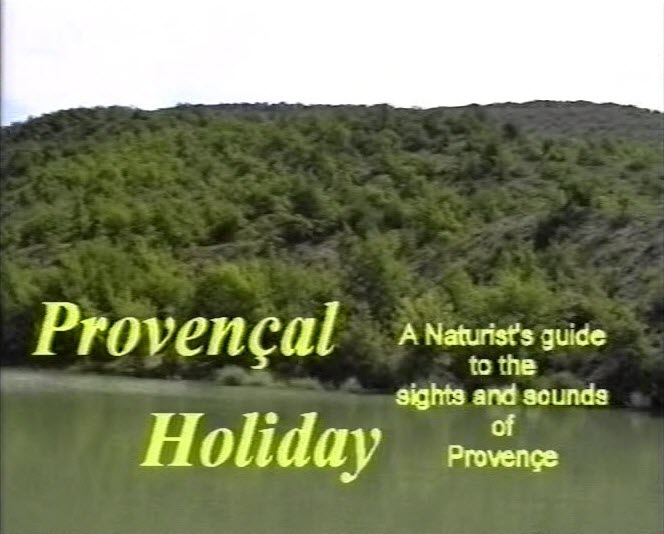 Provencal Holiday