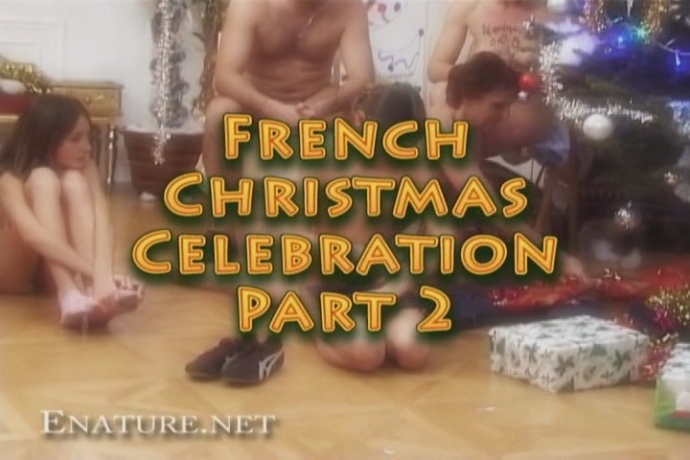 French christmas celebration 2 (enature)